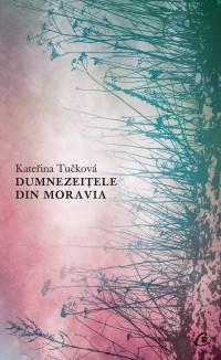 Dumnezeițele din Moravia